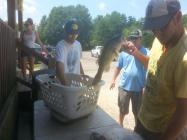 BassTournament-July-12-2014-20140712_140650